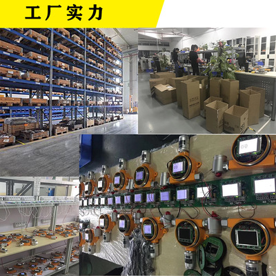 终极:多种气体检测仪